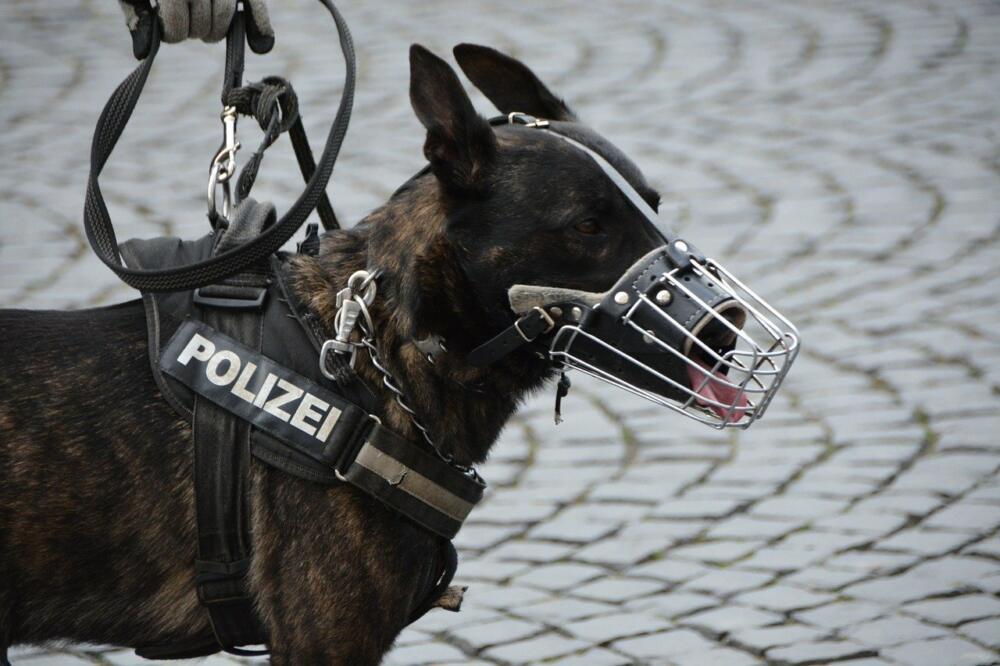 Police 1321255 1280
