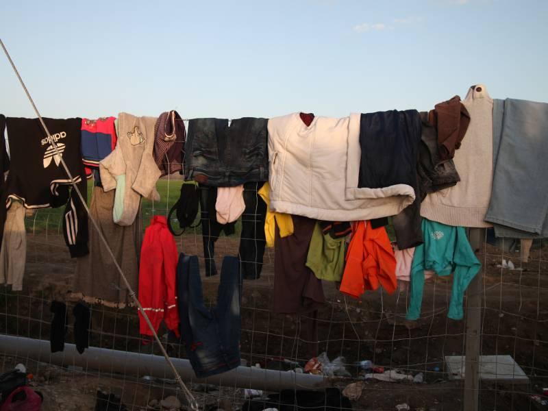 Gruene Fordern Von Bundesregierung Mehr Einsatz Fuer Eu Asylreform