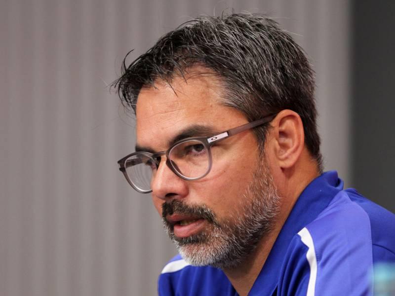 Schalke 04 Entlaesst Cheftrainer Wagner