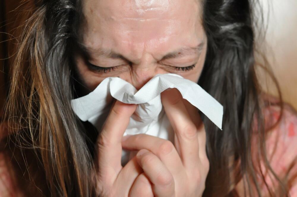 sniff-4923113_1280 Landratsamt Dillingen ruft zur Influenza-Schutzimpfung auf Dillingen Gesundheit News |Presse Augsburg
