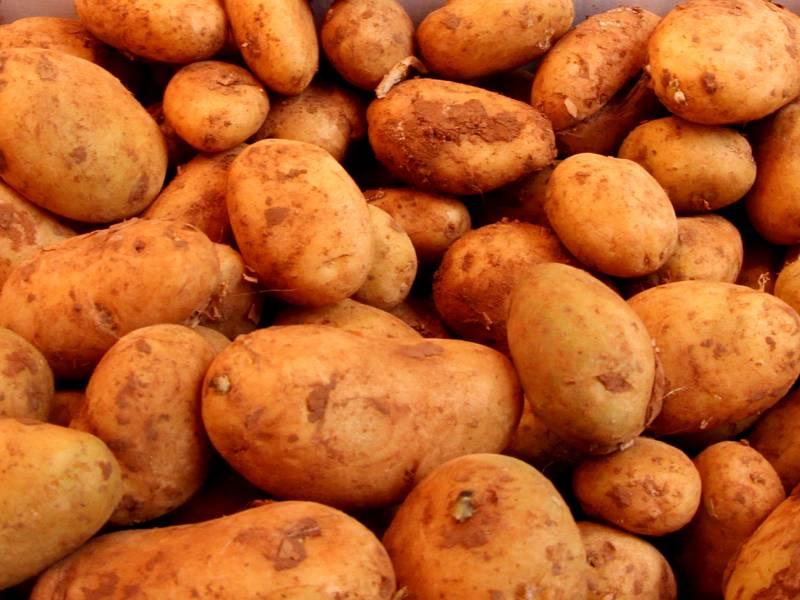 Erzeugerpreise Landwirtschaftlicher Produkte Gesunken
