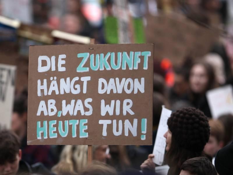 Klimaaktivisten Dringen Auf Rodungsstopp Im Dannenroeder Forst