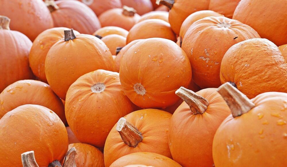 Pumpkin 4461665 1280