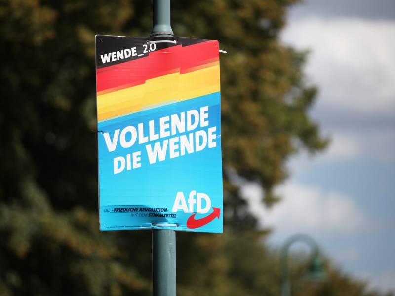 Studie Afd Waehler Reden Haeufiger Mit Gleichgesinnten Ueber Politik