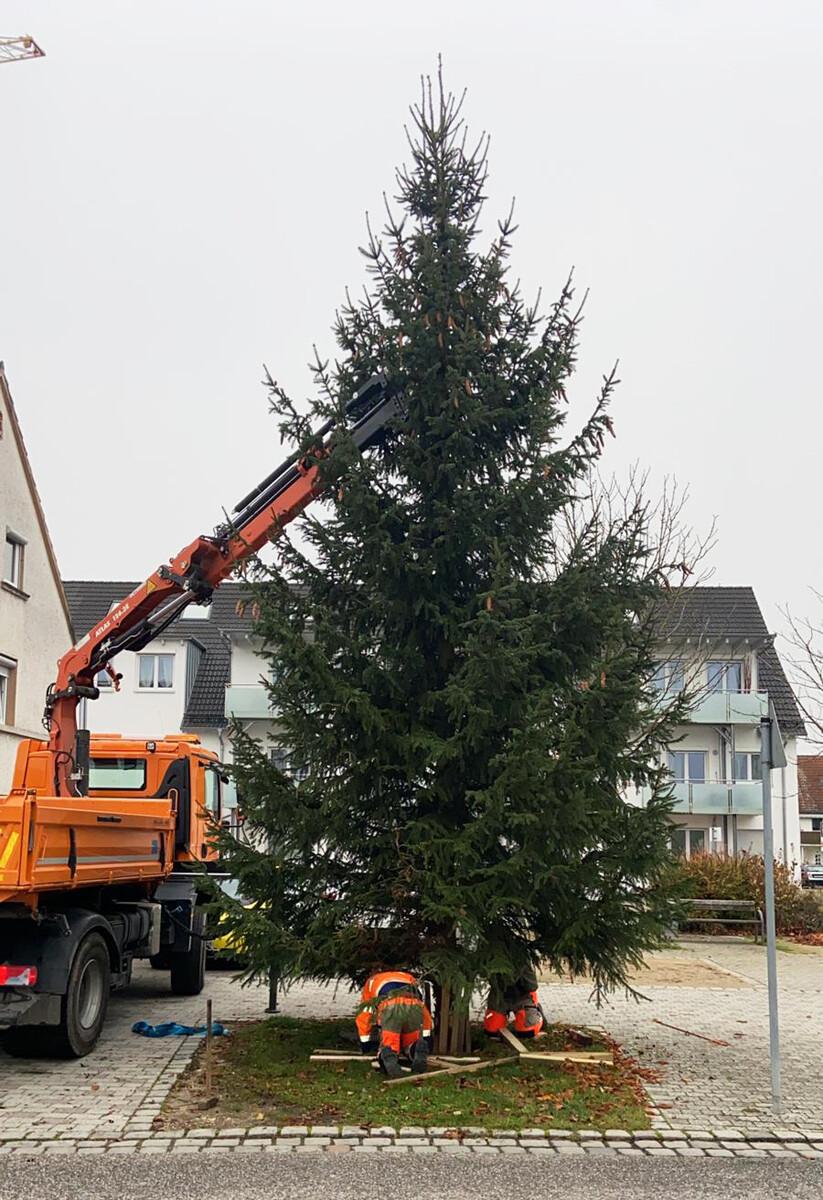 03_Weihnachtsbaum-Burlafingen_1200 Weihnachtliche Vorboten in Neu-Ulm Freizeit Neu-Ulm News |Presse Augsburg