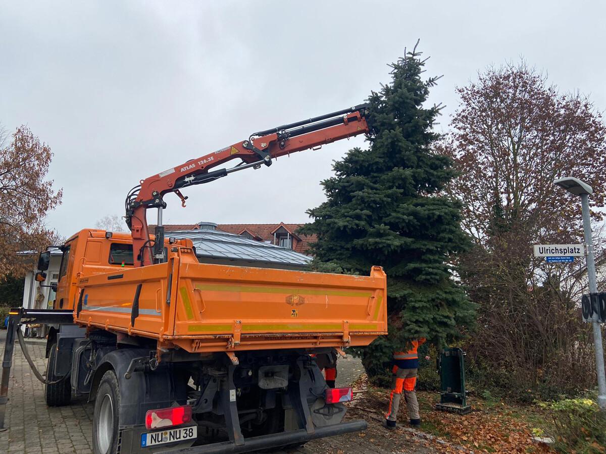 05_Weihnachtsbaum-Gerlenhofen_1200 Weihnachtliche Vorboten in Neu-Ulm Freizeit Neu-Ulm News |Presse Augsburg