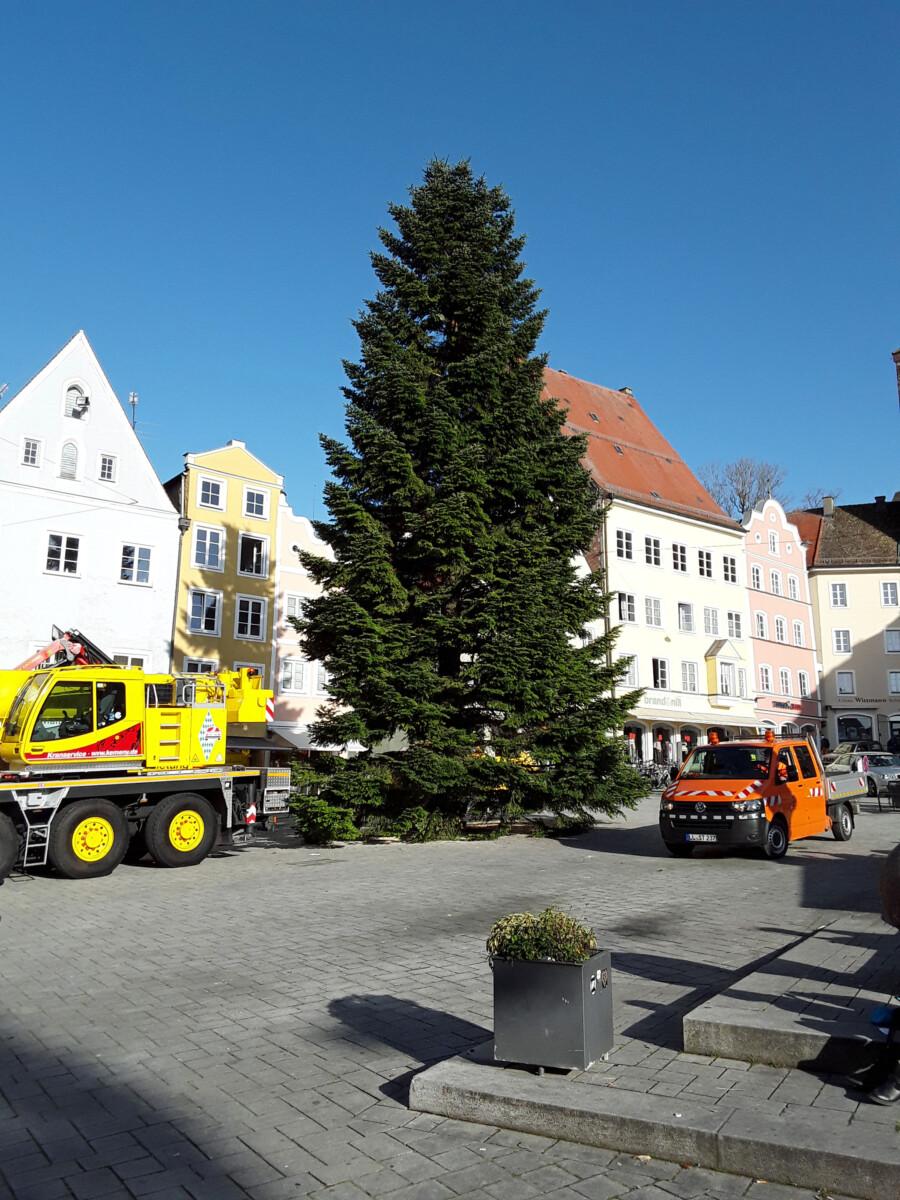 201111 Christbaum Hauptplatz