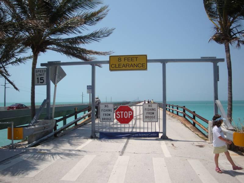 Bei Us Wahl Swing States Weiter Offen Trump In Florida Vorn