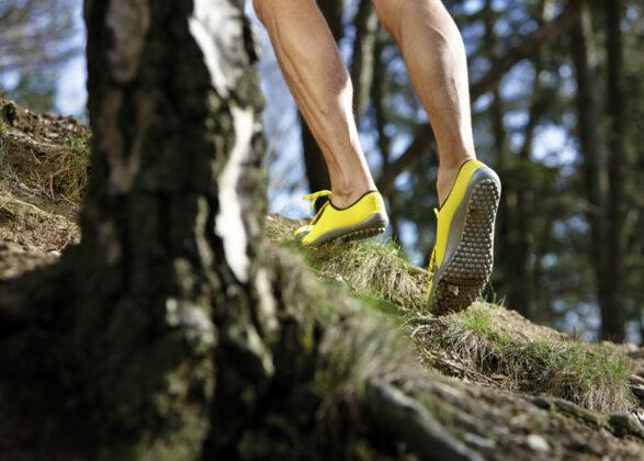 Leguano Aktiv Barfu Schuhe Made In Germany Bild Leguano Gmbh Small