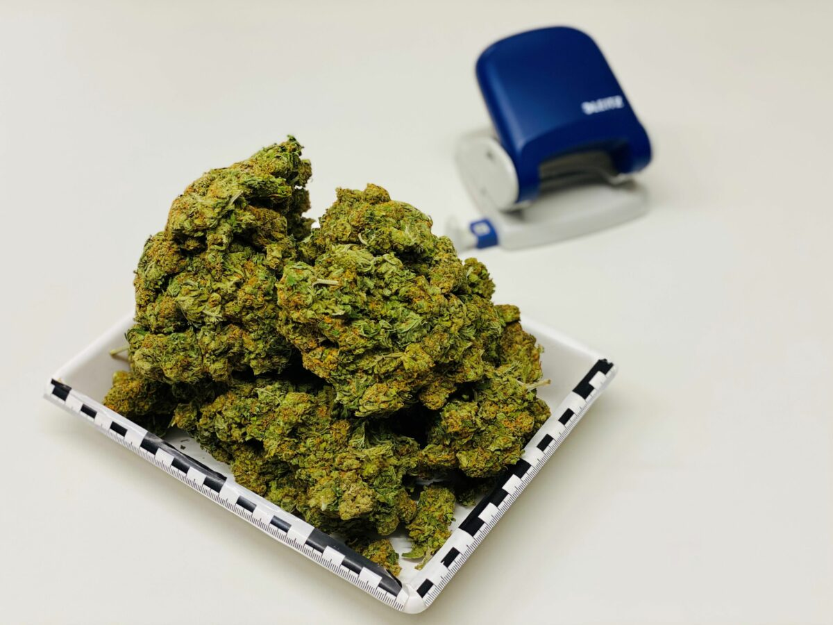 2812 Pi Zus Sicherstellung Marihuana Scaled