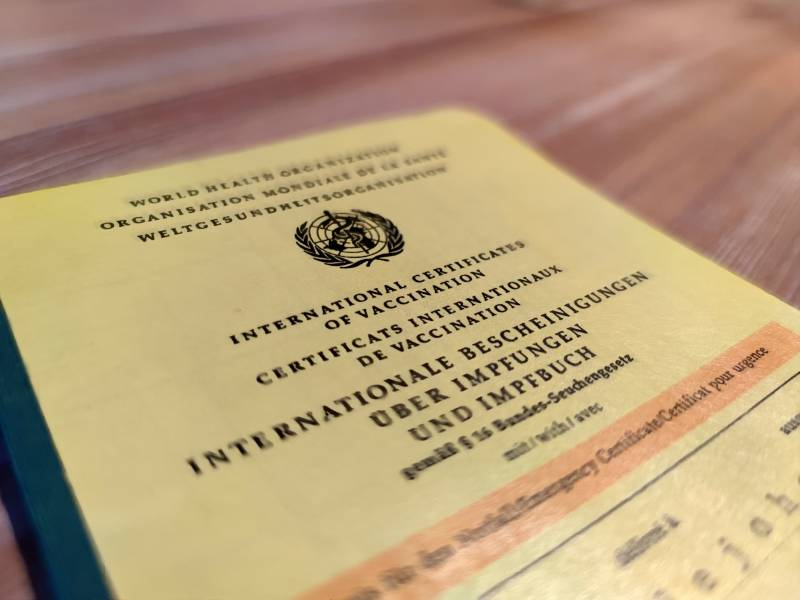 Bartsch Bundesregierung Muss Konkreten Impfplan Vorlegen