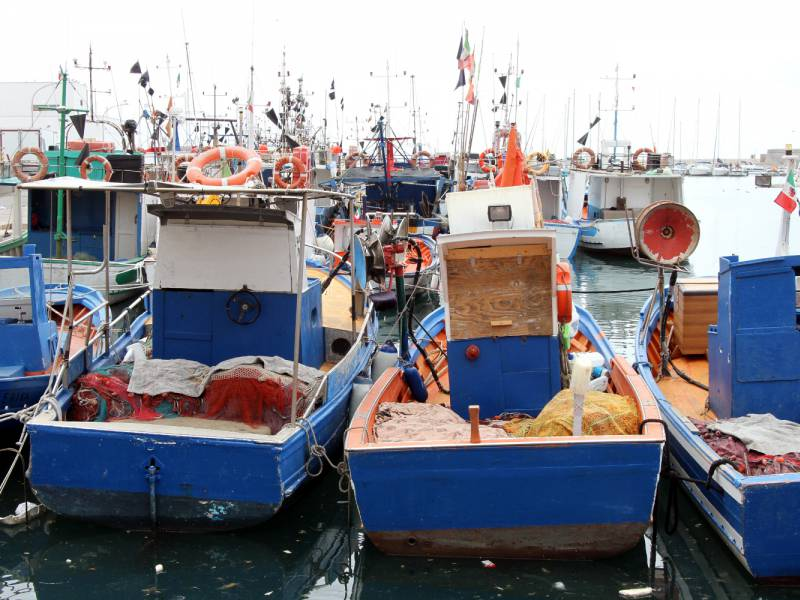 Eu Fischereiminister Beschliessen Vorlaeufige Fangquoten