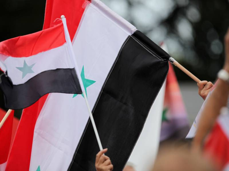 Linken Chefin Roettgens Syrien Vorstoss Zeigt Verzweiflung