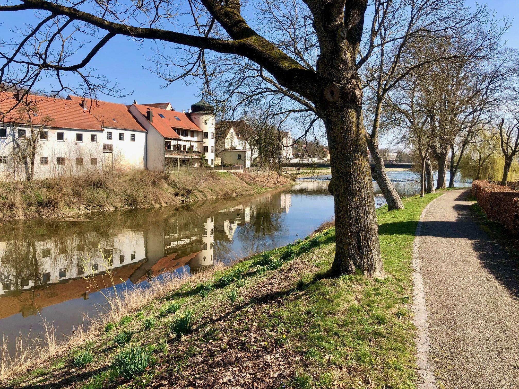 Gruenerspaziergang 2021 Donauspitz