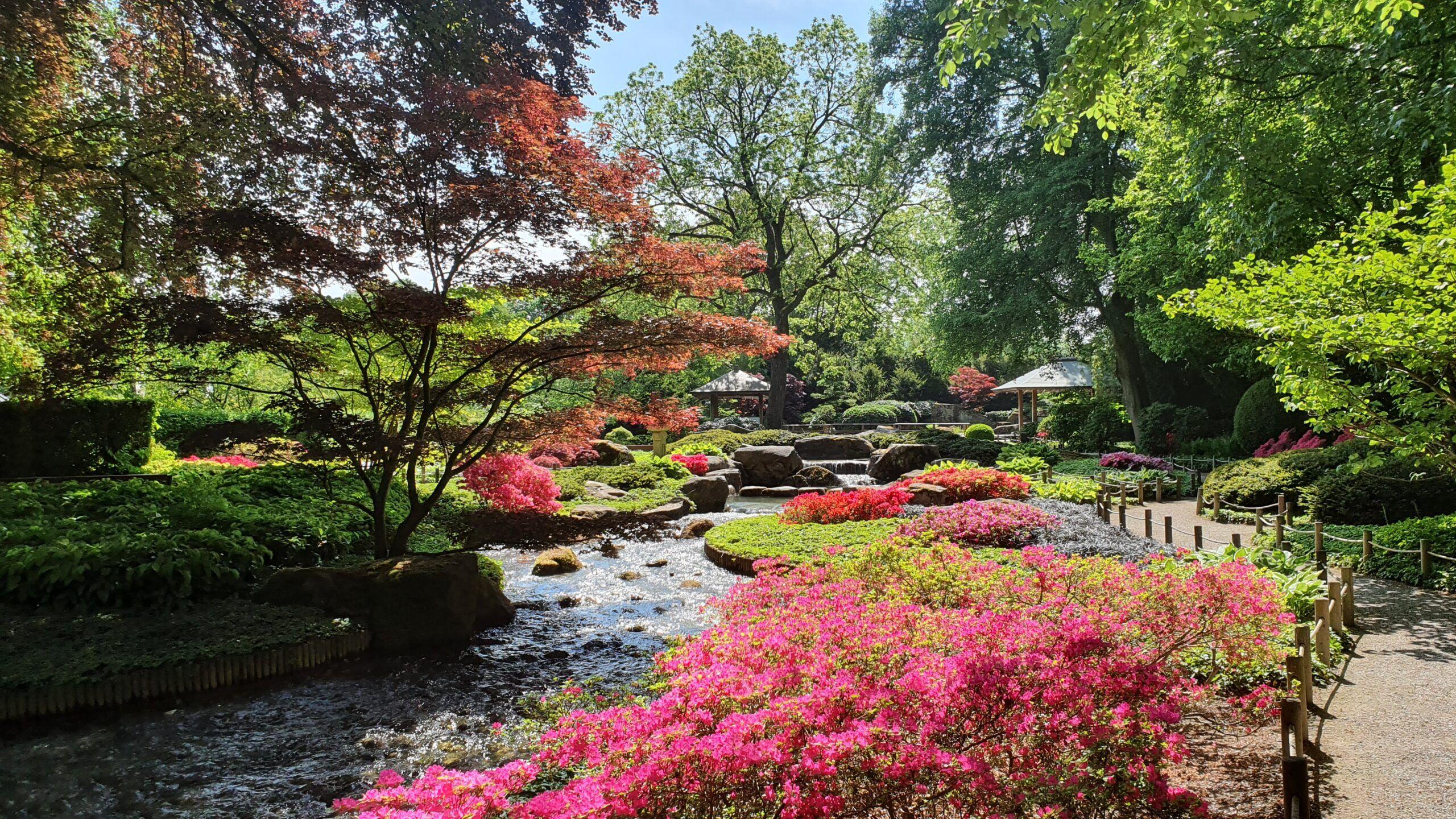 21 05 10 Bild 2 Bot Ten Japangarten Scaled