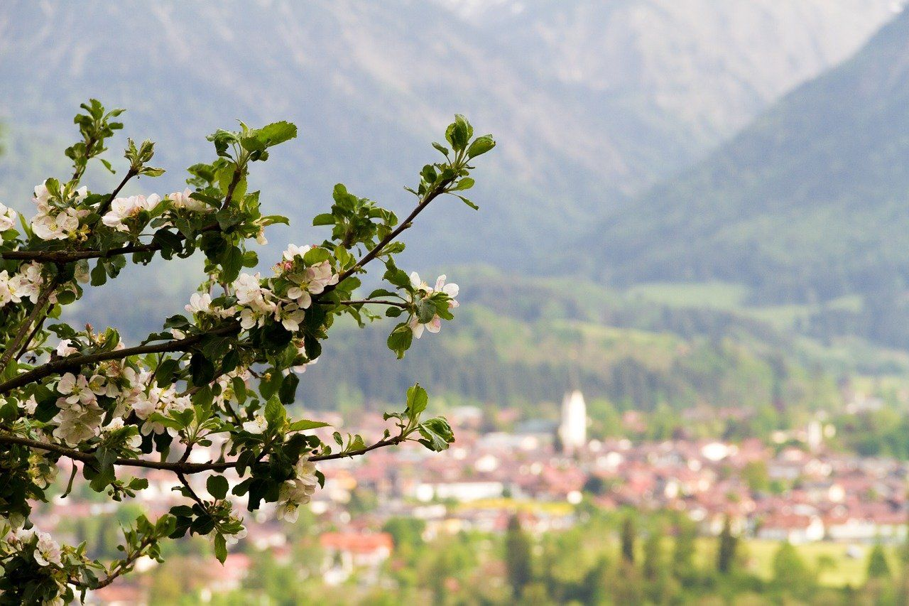 Oberstdorf 383307 1280