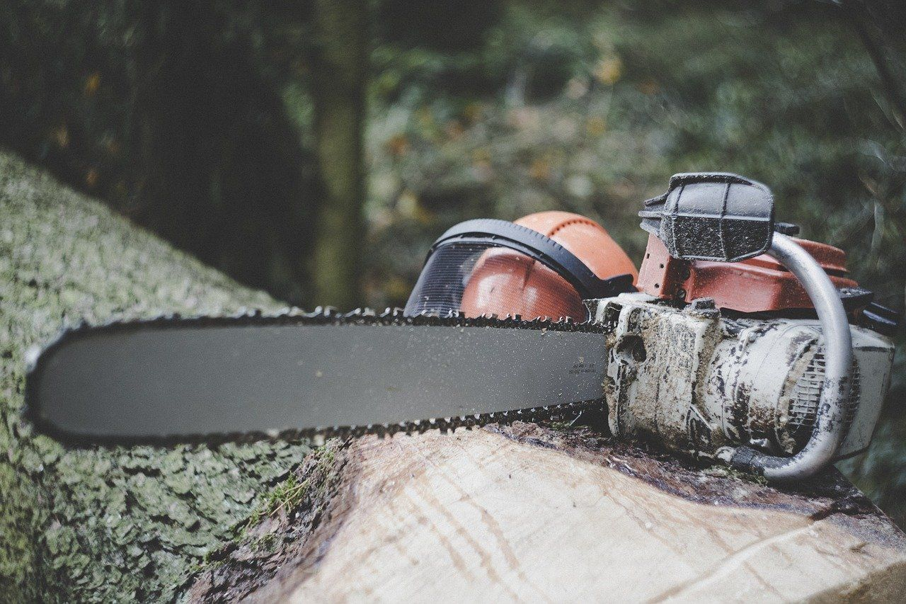 Chainsaw 3655667 1280