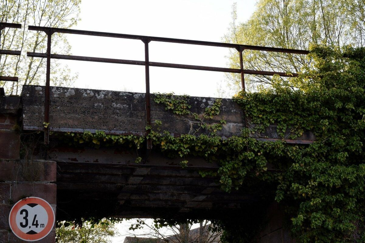 Climbing Ivy 3335092 1280
