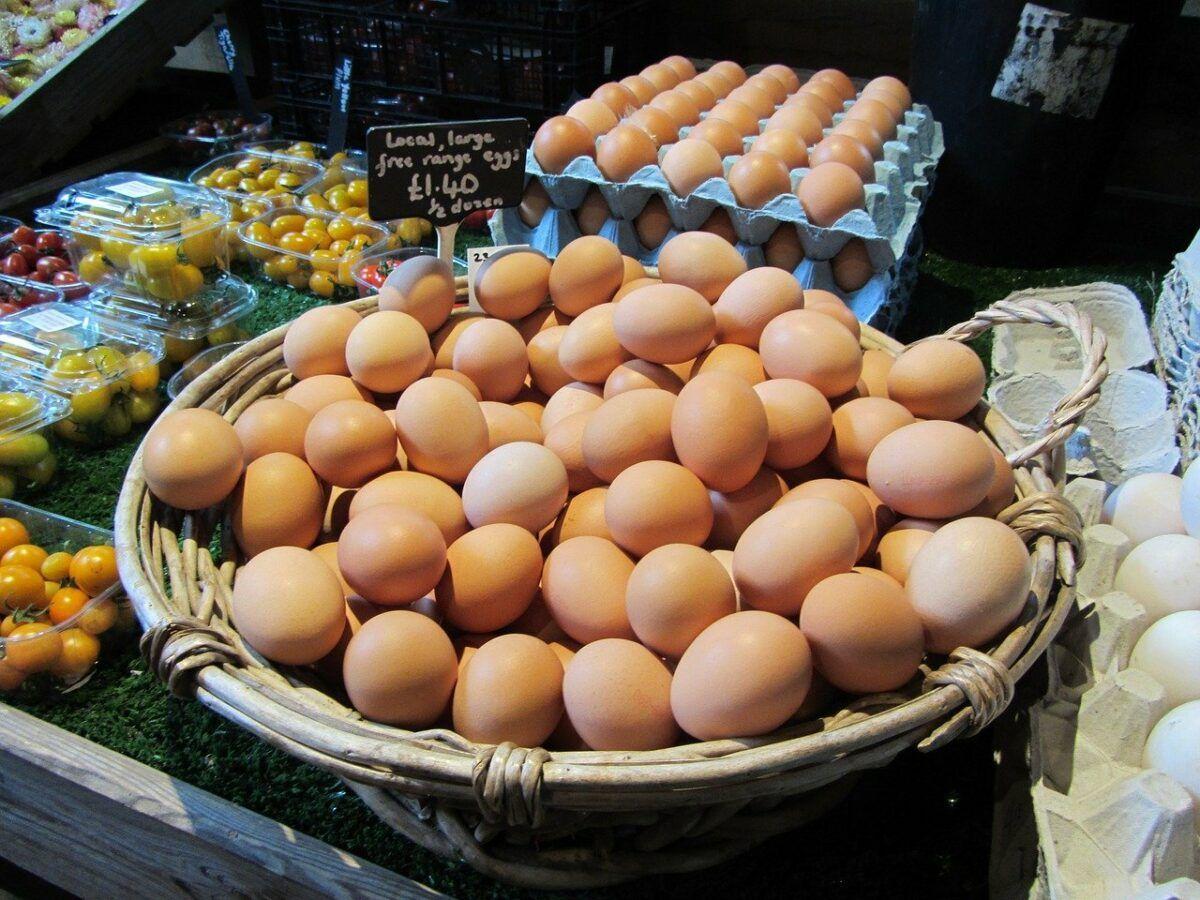 Eggs 648262 1280