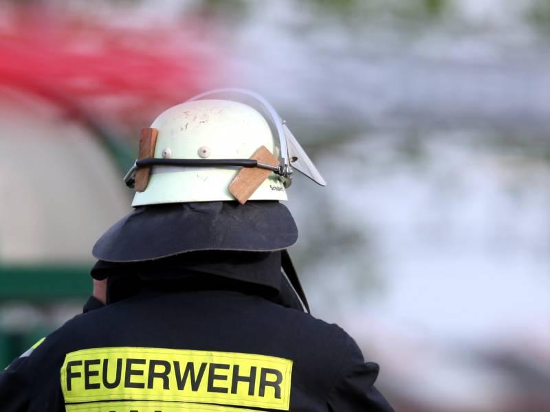 Feuerwehr Sieht Keine Hohe Waldbrandgefahr In Deutschland