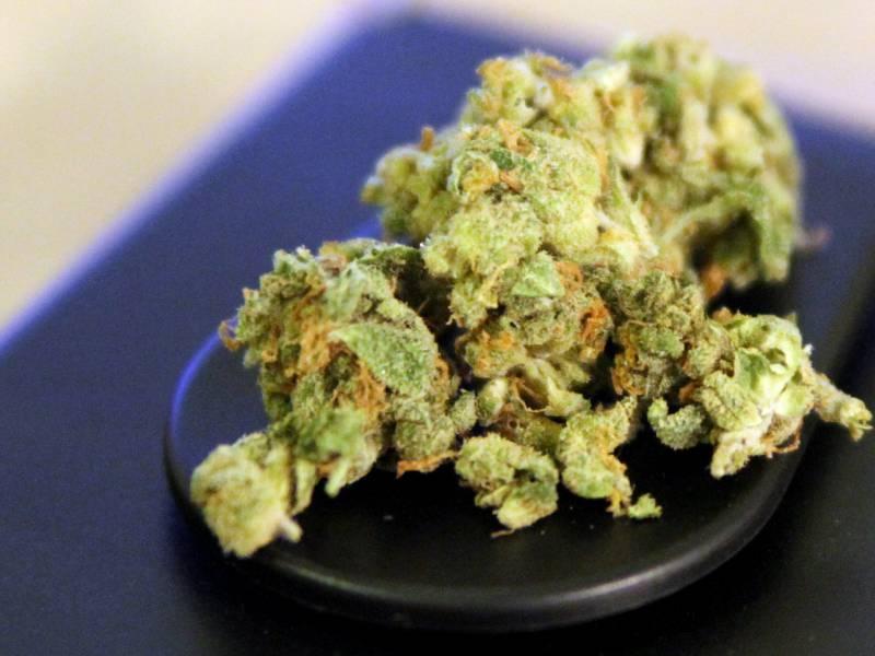 Gruene Lehnen Vorstoss Zu Sechs Gramm Grenze Bei Cannabis Ab