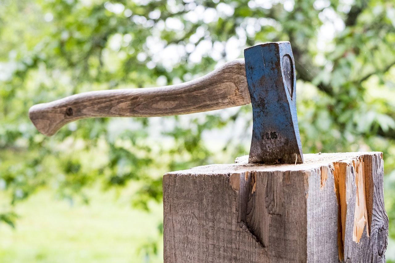 Wood 3075862 1280